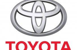 Toyota, Nueva Ecija