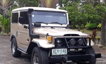 1975 Toyota Land Cruiser for sale in Silang